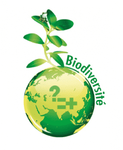 des ateliers biodiversité dans mon quartier