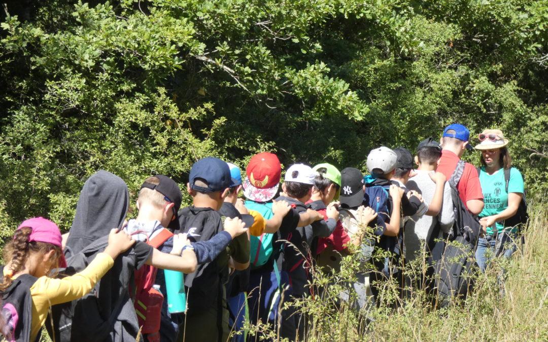 Un été débrouillard dans l'Hérault – juillet 2020