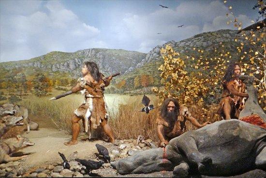 Cet été, ce sera préhistoire ou canaux ?